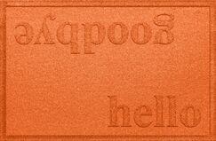 Ashland Hello/Goodbye Doormat Color: Orange