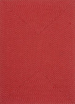 Daniell Hand-Woven Red Indoor/Outdoor Area Rug Rug Size: Rectangle 3'6