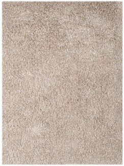 Bright Champagne Area Rug Rug Size: Rectangle 3'6
