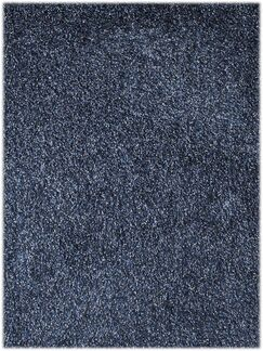 Bright Blue Area Rug Rug Size: Rectangle 7'6