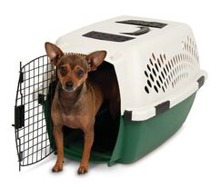 Plastic Dog Crate/Carrier Size: 24