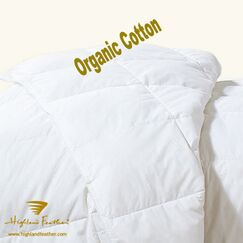 Budapest Down Comforter Size: Queen