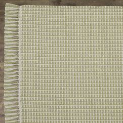 Iggy Hand-Woven Cotton Olive Area Rug Rug Size: Rectangle 4' x 6'