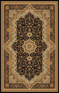 Boody Traditional Oriental Black Area Rug Rug Size: Rectangle 5'4