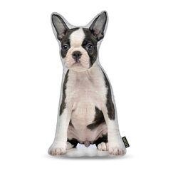 Cordray Terrier Throw Pillow