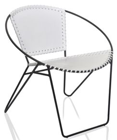 Coury Mid-Century Papasan Chair