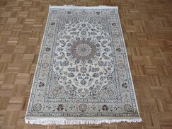 One-of-a-Kind Padro Hand-Knotted Wool Ivory Area Rug Rug Size: Rectangle 3'11