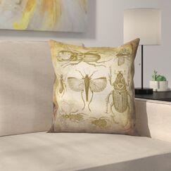 Beetle Vintage Throw Pillow Size: 16