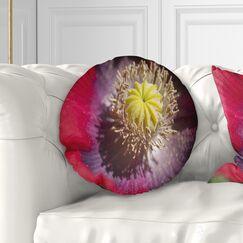 Flowerswork Colorful Opium Poppy Flower Photo Throw Pillow Size: 16