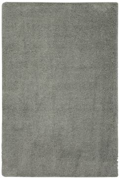 Auguste Gray Area Rug Rug Size: Rectangle 2'6