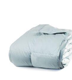 700 Fill Power All Season Down Comforter Size: Full / Queen, Color: Juniper Blue