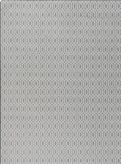 Broom Gray Fog Area Rug Rug Size: Rectangle 2'8