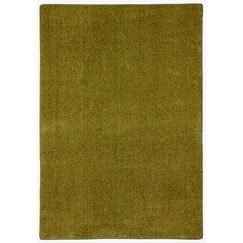 Modern Times Harmony Dried Herb Area Rug Rug Size: Rectangle 5'4