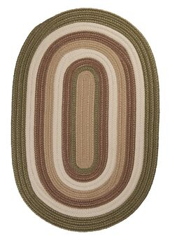 Brooklyn Moss Braided Indoor/Outdoor Area Rug Rug Size: Rectangle 4' x 6'