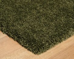 Lohan Green Area Rug Rug Size: Runner 2'8