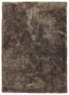 Bieber Brown Area Rug Rug Size: Rectangle 2' x 3'