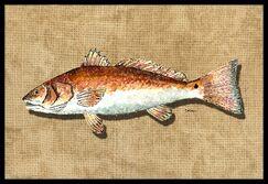 Fish Doormat Mat Size: Rectangle 1'6
