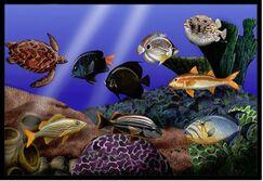 Undersea Fantasy 1 Doormat Mat Size: 1'6