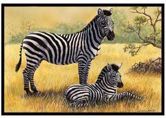 Zebras Doormat Mat Size: 2' x 3'