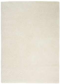 Parrish Ivory Area Rug Rug Size: Rectangle 6'7