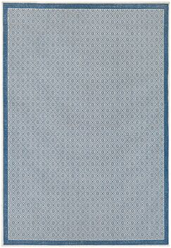Wexford Blue Indoor/Outdoor Area Rug Rug Size: Runner 2'3
