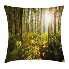 Forest Sun Rays Woods Foliage Pillow Cover Size: 18