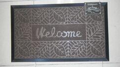 Welcome Doormat Color: Coffee