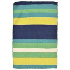 Ranier Hand-Woven Green Indoor/Outdoor Area Rug Rug Size: Rectangle 2' x 3'