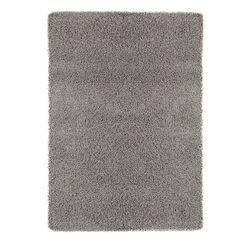 Cozy Gray Area Rug Rug Size: Rectangle 8'2