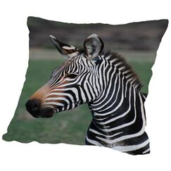 Zebra Africa Throw Pillow Size: 18