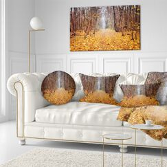 Fallen Leaves in Morning Landscape Photography Throw Pillow Size: 20