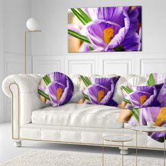 Blooming Crocus Flower Floral Throw Pillow Size: 16
