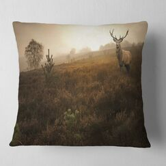 Mist Forest with Deer Stag Landscape Photo Pillow Size: 18