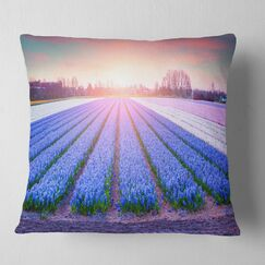 Abstract Field of Blooming Hyacinth Flowers Pillow Size: 26
