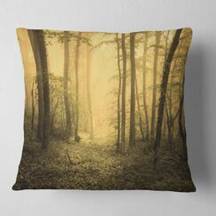 Landscape Trail Through Foggy Forest Pillow Size: 18