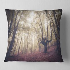 Landscape High Rise Trees in Forest Pillow Size: 26