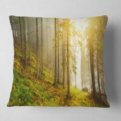 Landscape Sun Finds It's Way in Forest Pillow Size: 16