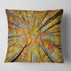 Forest Tree Tops in Autumn Forest Pillow Size: 16
