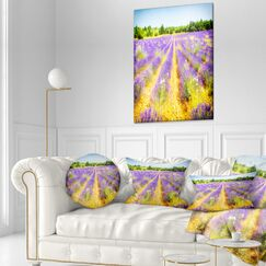 Floral Fantastic Lavender Field of France Throw Pillow Size: 20