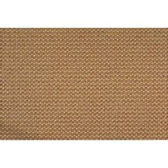 Tan Area Rug Rug Size: Rectangle 8' x 10'