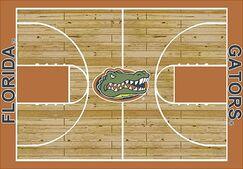 NCAA College Home Court Florida Novelty Rug Rug Size: Rectangle 5'4