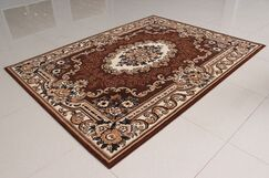 Brown Area Rug Rug Size: 7'11