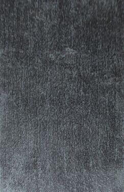 Dogwood Dark Gray Area Rug Rug Size: 5'3