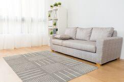 Gray Area Rug Rug Size: Rectangle 2' x 3'