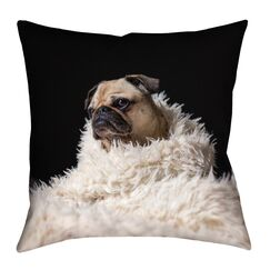Karlos Pug in Blanket Square Floor Pillow Size: 28