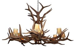 Attwood Antler Elk Single Tier 12-Light We have associated to option Chandelier Shade Color: Rawhide, Finish: Rustic Bronze/White