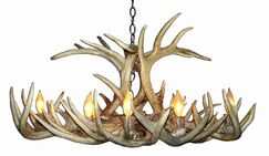 Doliya Antler Whitetail Oblong 8-Light We have associated to option Chandelier Shade Included: No, Shade Color: No Shade, Finish: Rustic Bronze/Natural Brown