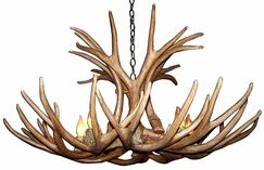 Attwood Antler Mule Deer 6-Light We have associated to option Chandelier Finish: Bronze/White, Shade Color: Rawhide