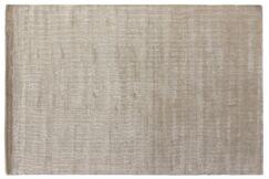 Smart Gem Hand-Woven Light Silver Area Rug Rug Size: 10' x 14'