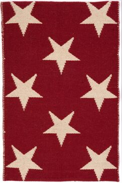 Star Hand Woven Red Indoor/Outdoor Area Rug Rug Size: Rectangle 5' x 8'